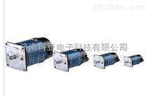 48v永磁直流电机