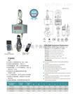 OCS-XC-KAE30 噸直視電子吊磅秤