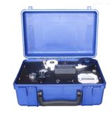 SS331便携式硫化氢分析仪