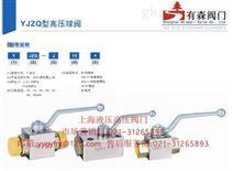 YJZQ-J32B_板式高压球阀