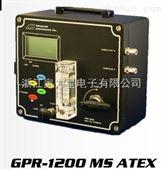 微量氧分析仪GPR-1200MS