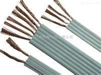 特种扁平电缆