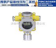 RBT-6000-zlg-现场检测甲烷气体报警器