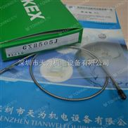日本竹中TAKEX耐高温光纤传感器