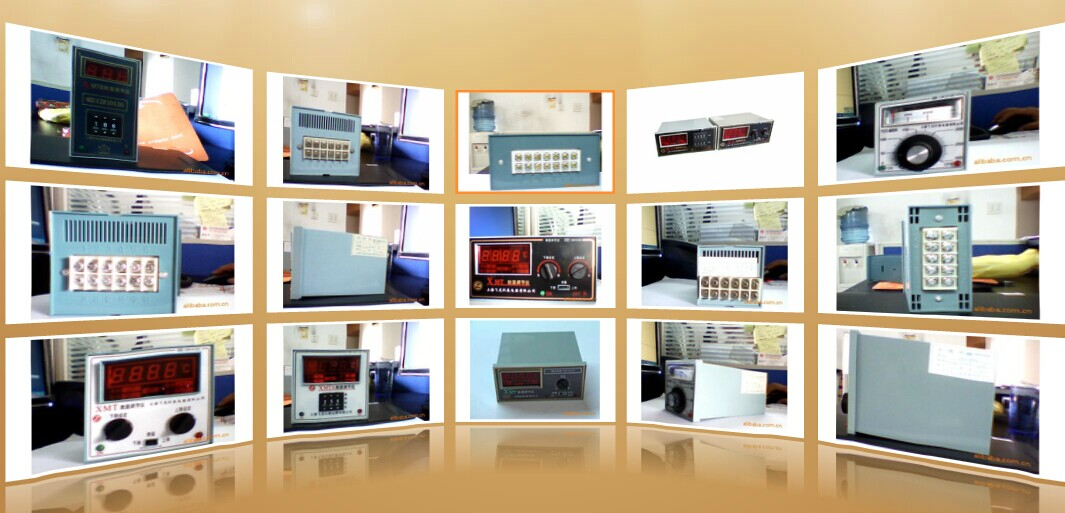 上海飞龙仪表电器有限公司