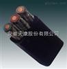 YVFR电缆-(耐寒耐磨耐油)YVFRP电缆