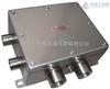 BXK-DIPA20 不锈钢防爆控制箱厂家