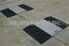 南京40吨电子轴重仪